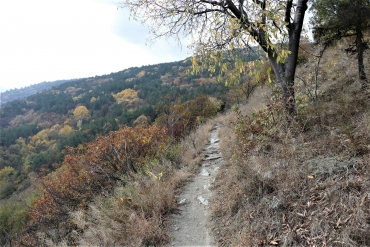 Идея за по-различна разходка до Асеновата крепост